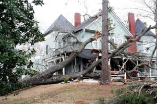 Have you experienced Storm Damage?